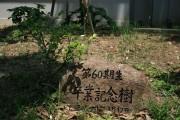 image_60