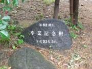 image_62